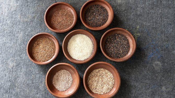 1555235150 Proekt Sedobnye arhivy prizvan vozrodit sotni ischezayushhih sortov indijskogo risa sol NPR 1024x576 - Как приготовить рассыпчатый рис на гарнир