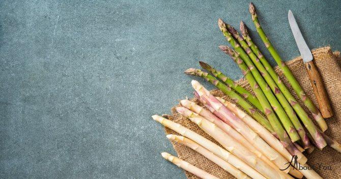 7 популярных рецептов со спаржей