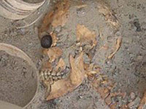 Артефакт фрагмент человеческого черепа, который был найден на месте торгового центра Рибе