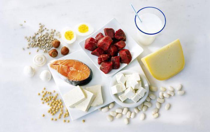 белковая диета меню на 14 дней рекомендации