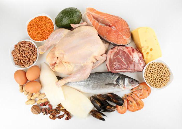 белковая диета меню на 14 дней секреты