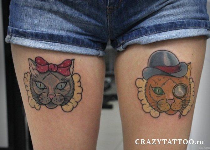 Больше котиков от Сергея Грэя
