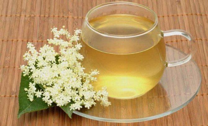 Чай из цветков бузины