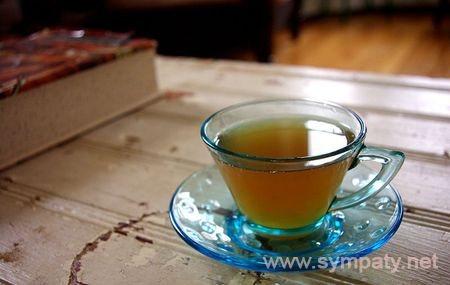 как правильно пить чайный гриб чтобы похудеть