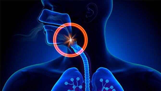 Чего нельзя делать и что нужно делать, если болит горло