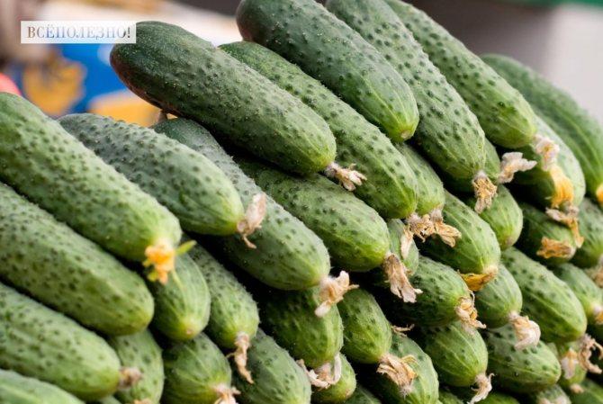 Чем полезны овощи и фрукты для человека?