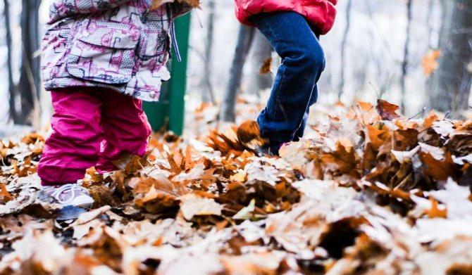 чем заняться осенью с детьми: 20 приятных семейных дел фото 3