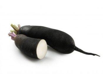 Черная редька: польза и вред для мужчин
