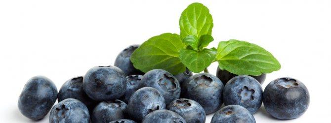 Черника. Топ-5 самых богатых витаминами фруктов и ягод