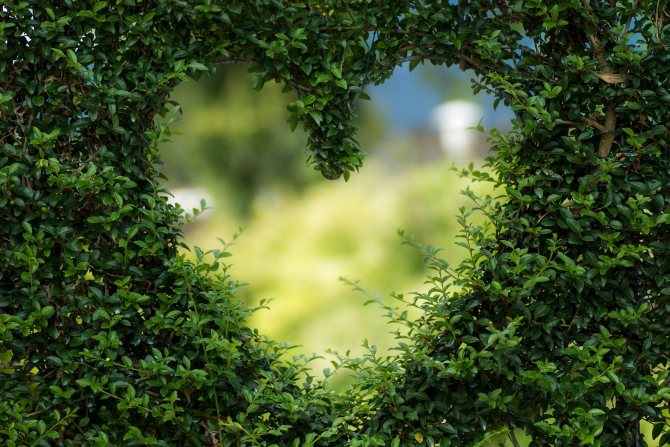 Что такое настоящая любовь, какая она есть и 12 признаков