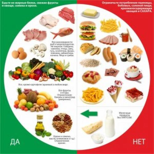 Что такое правильное питание. Польза правильного питания и его базовые принципы