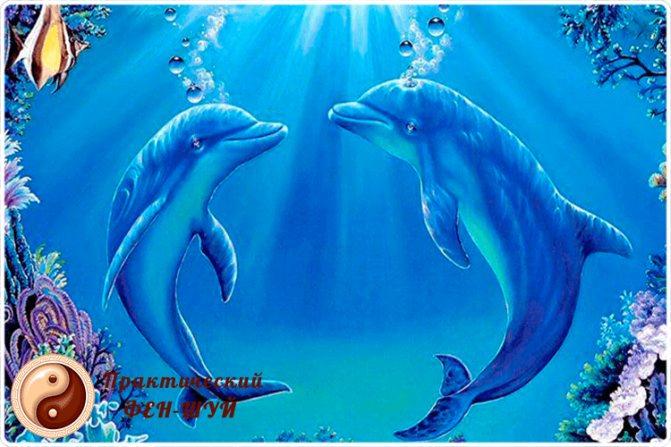 дельфины картина