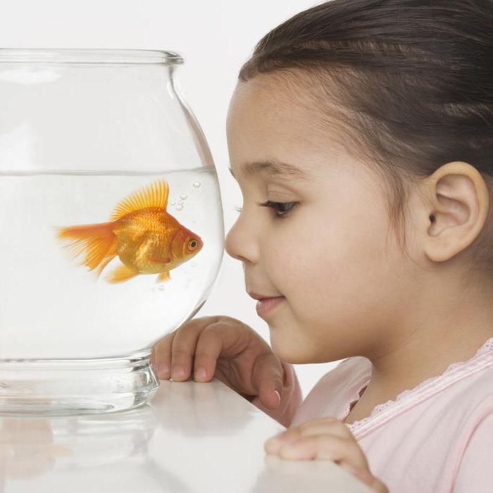 дети по знакам зодиака рыбы