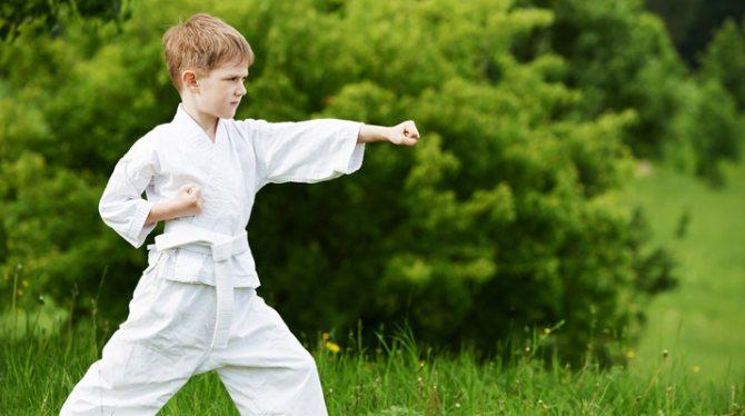 детские боевые искусства