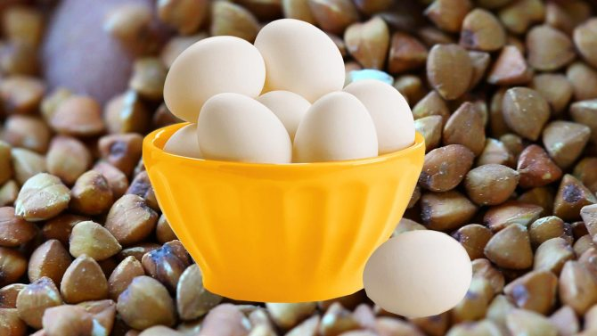 Диета на гречке и на яйцах