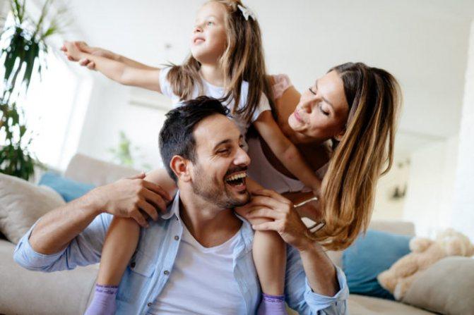 Домашний папоротник улучшает психологический климат в доме