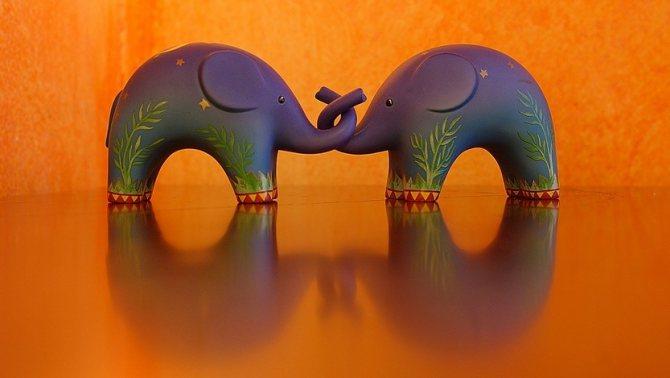 Два слона по фен-шуй