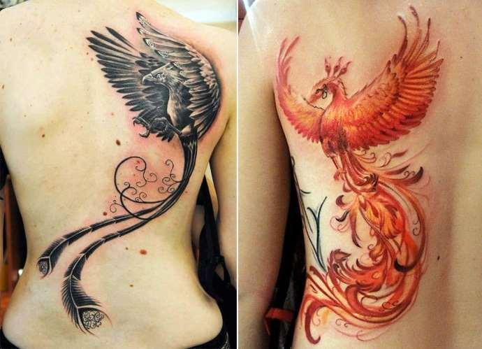 две птицы