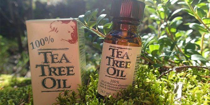 Эфир чайного дерева
