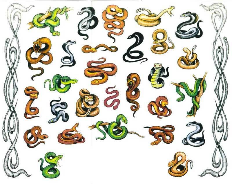 Эскизы разноцветных змей