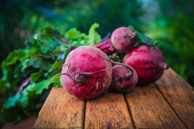 Если сочетать свеклу с капустой, то эффект от диеты увеличится в разы