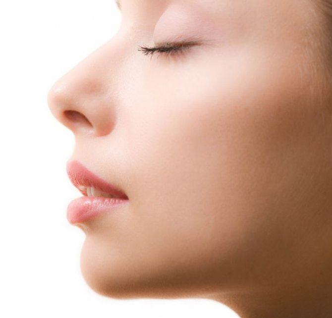 форма носа.JPG