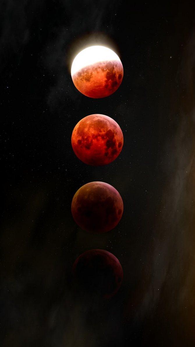 Фото: unsplash.com