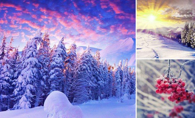 Гардероб для цветотипа внешности «Зима»
