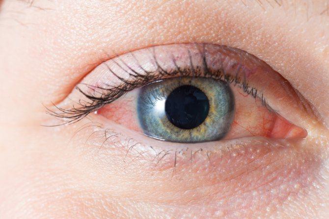 глаз с ресницами очень крупно