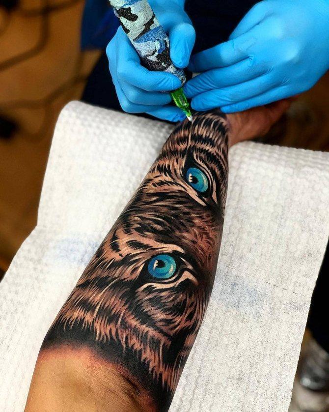 Голубые Глаза Тигра на Руке