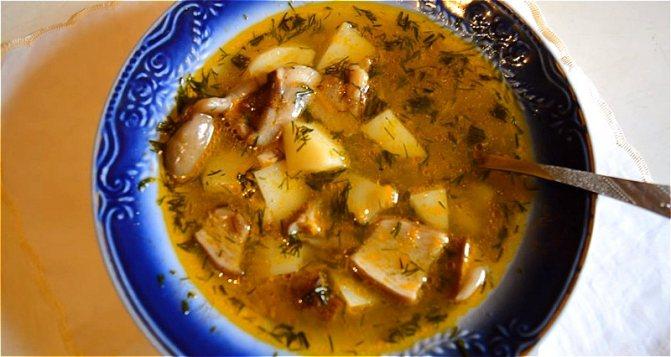 готовый грибной суп из свежих грибов с картошкой
