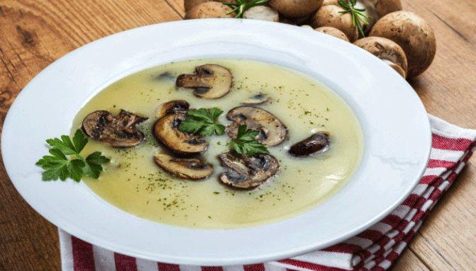 Грибной суп из шампиньонов – картинка