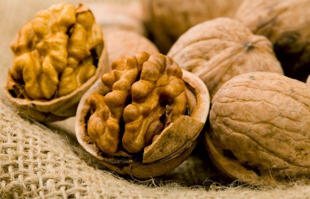 Хороший урожай на орехи в Третий Спас предвещает хороший урожай хлеба в будущем году / ampodemoda.com