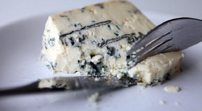 Использование сыра с плесенью при похудении — несколько советов