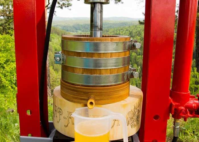 Из чего делают горчичное масло
