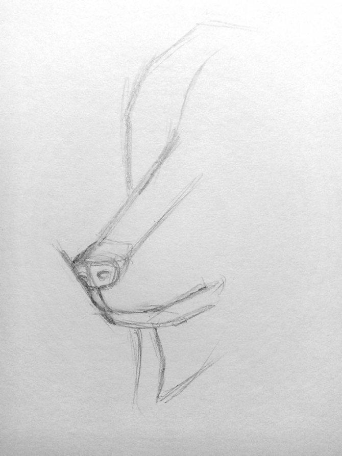 Как нарисовать волка карандашом? Поэтапный урок. Шаг 3. Портреты карандашом - Fenlin.ru