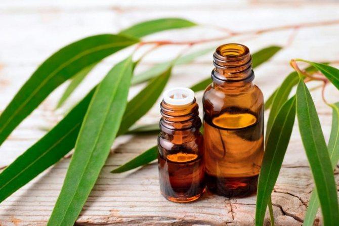 как сделать эфирные масла в домашних