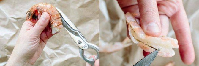 Как удалить кишечник у креветки
