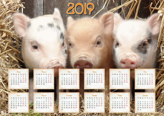 календарь с символом года