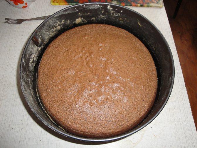Корж для торта «Прага»