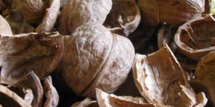Кожура грецкого ореха