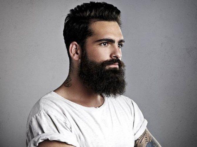 Красивой бороду делает здоровый и ухоженный волос