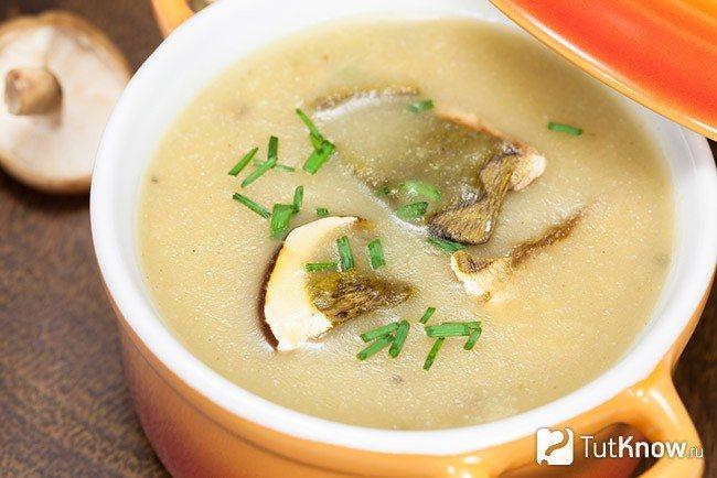 Кремообразный суп из сушеных грибов
