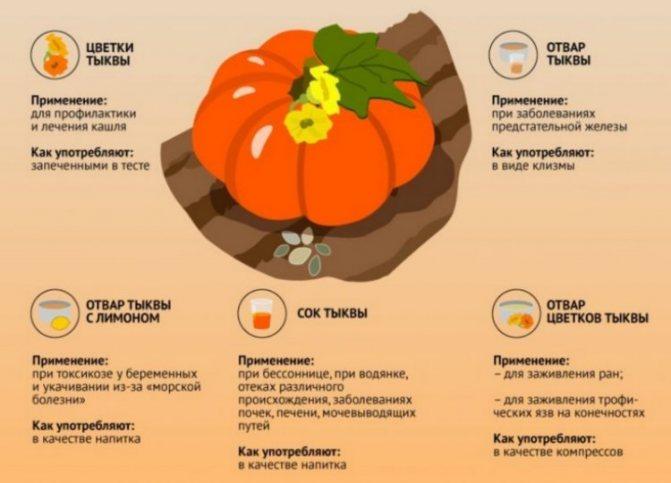 Лечебные свойства тыквенного сока для мужчин