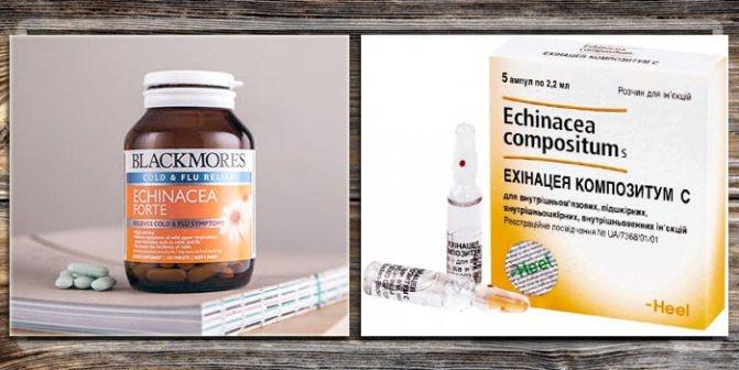 Лекарства с эхиноцеей