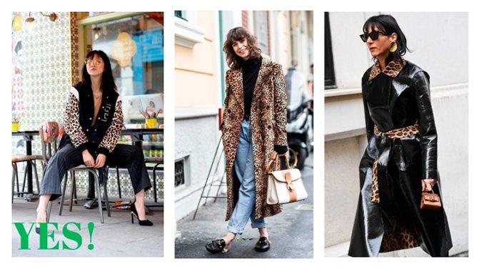 Леопардовое пальто: с чем носить