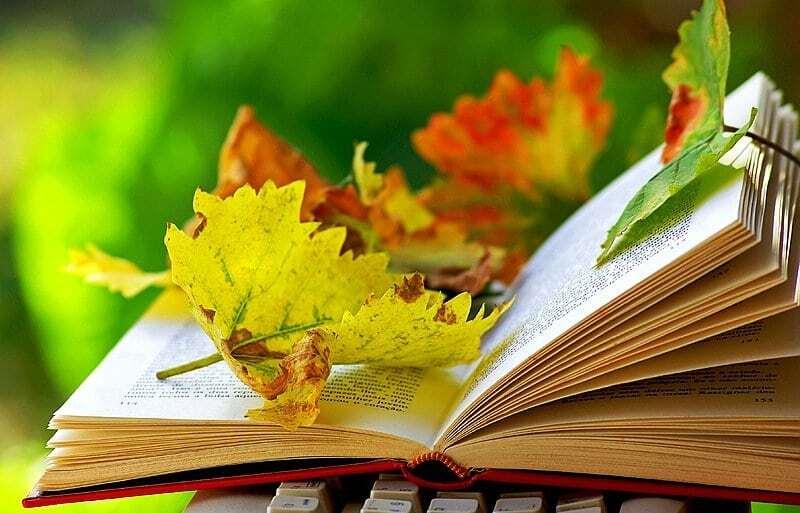 Лучшее время для вдохновения: 10 причин полюбить осень