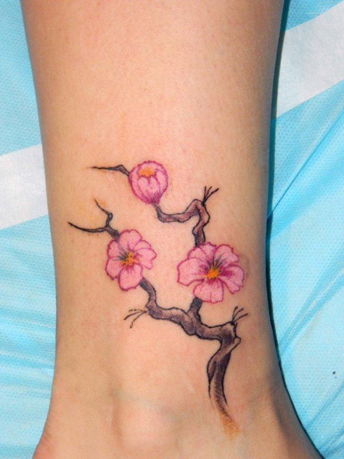 Маленькая веточка сакуры в качестве небольшой татуировки на ногу