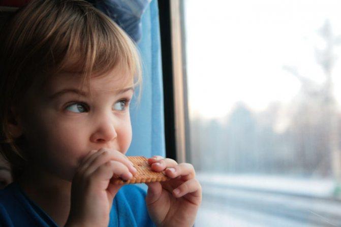 малыш кушает галетное печенье и смотрит в окно поезда