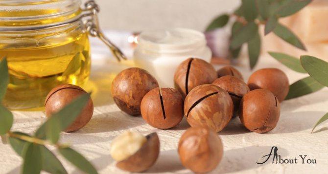 Масло макадамии характеризуется рядом полезных свойств